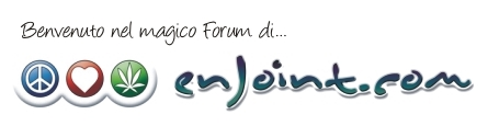 Enjoint - Powered by vBulletin